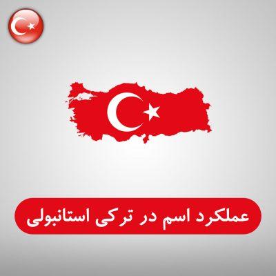 عملکرد اسم در زبان ترکی استانبولی