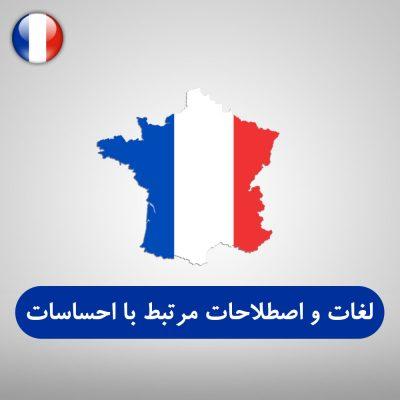 لغات و اصطلاحات مرتبط با احساسات فرانسوی